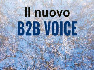 Il nuovo B2B Voice